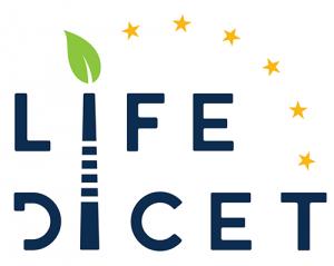 Life dicet logo
